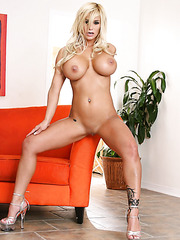 Shyla Stylez strips in the hottest poses demonstrating every part of her body