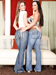 Busty brunette Lisa Ann and her horny girlfriend Tori Black in the action
