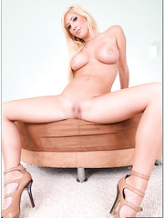 Divine looks of this topnotch pornstar Tasha Reign will leave you pleased